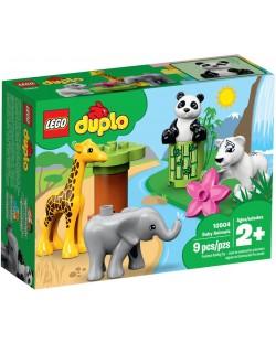 Конструктор Lego Duplo - Baby Animals (10904)
