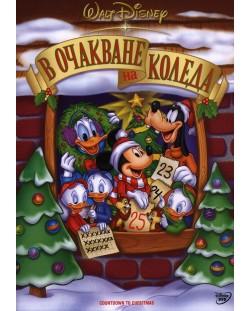 В очакване на Коледа (DVD)