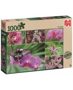 Пъзел Jumbo от 1000 части - Холандски орхидеи