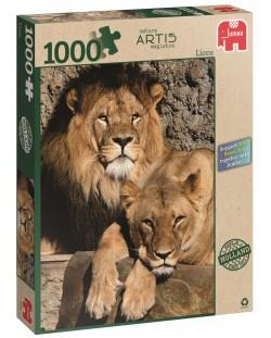 Пъзел Jumbo от 1000 части - Лъвове