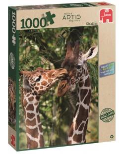 Пъзел Jumbo от 1000 части - Жирафи