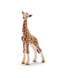 Фигурка Schleich от серията Дивия живот - Африка: Жираф мрежест - бебе