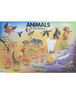 Animals of the World 1 (табло)