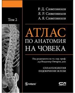 Атлас по анатомия на човека - том 2: Спланхнология, Ендокринни жлези