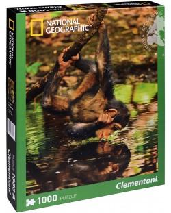 Пъзел Clementoni от 1000 части - Бебе шимпанзе