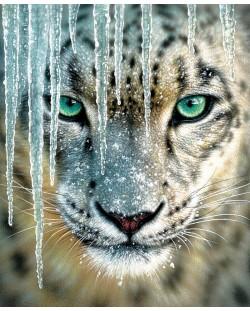 Пъзел SunsOut от 1000 части - Син лед, Колин Богъл