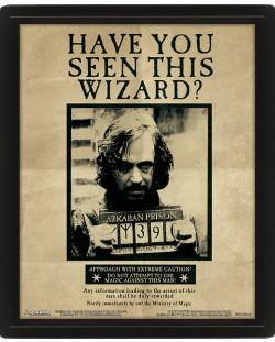 3D плакат с рамка Pyramid - Harry Potter: Potter / Sirius