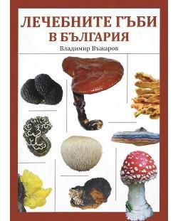 Лечебните гъби в България