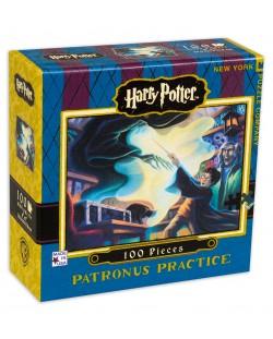 Мини пъзел New York Puzzle от 100 части - Patronus Practice