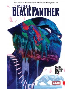 rise-of-the-black-panther