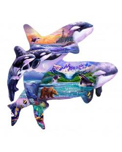 Пъзел SunsOut от 1000 части - Китове убийци, Стийв Съндрам