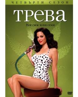 Трева - Сезон 4 (DVD)