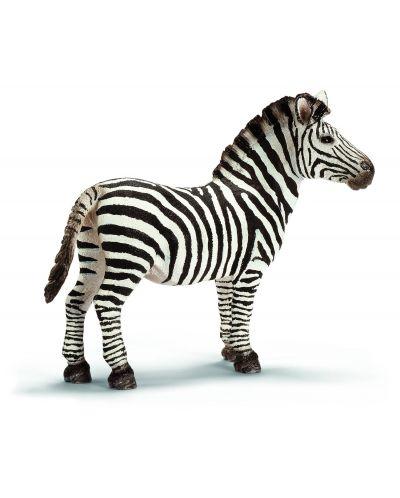 Фигурка Schleich от серията Дивия живот - Африка: Зебра - мъжка - 1