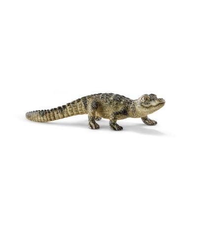 Фигурка Schleich от серията Дивия живот - Америка: Алигатор - бебе - 1