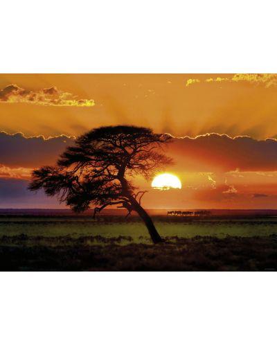 Пъзел Heye от 1000 части - Слънчево дърво, Слънчева светлина - 2