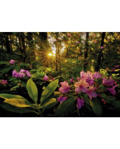 Пъзел Heye от 2000 части - Рододендрон, Магическата гора - 2