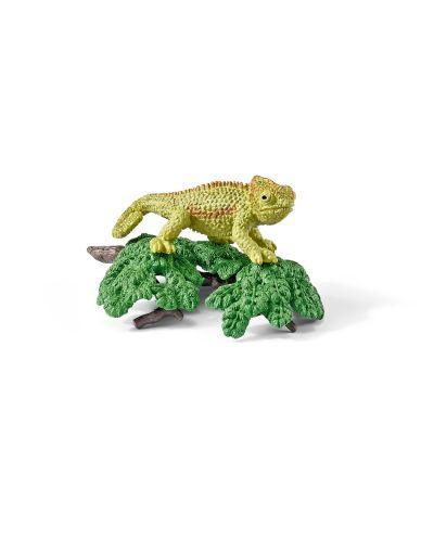 Фигурки Schleich от серията Аксесоари към Диви Животни: Комплект - хамелеон - 1