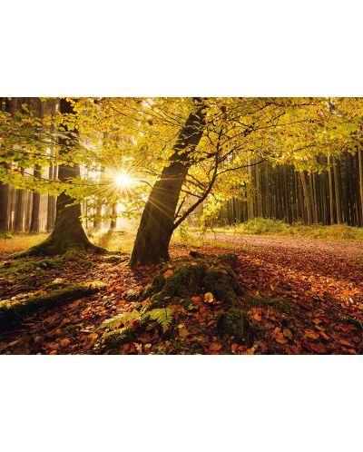 Пъзел Schmidt от 1000 части - Есенна магия, Щефан Хефеле - 2