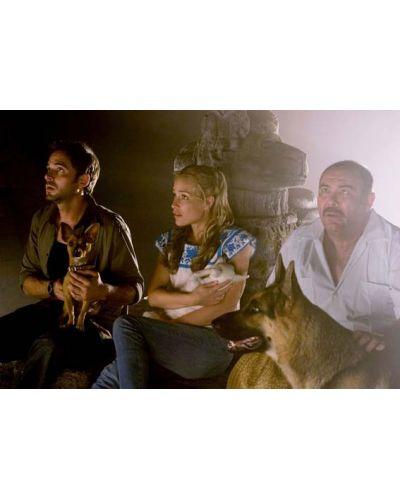 Бевърли Хилс Чихуахуа (DVD) - 9