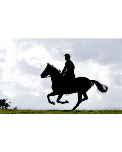 Боен кон (Blu-Ray) - 12