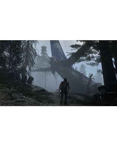 Days Gone (PS4) - 4