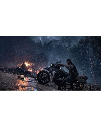 Days Gone (PS4) - 12