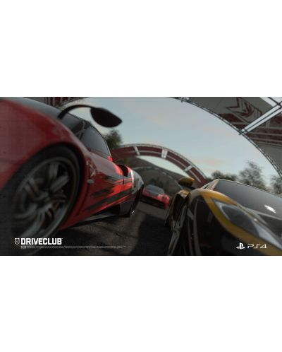 DriveClub (PS4) - 14