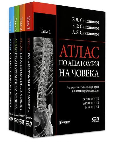 "Колекция ""Атлас по анатомия на човека"" - 1"