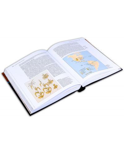 Хората от Земята: Въведение в световната праистория - 3