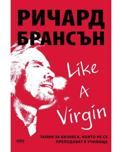 Like a virgin: Бизнес тайни, които не се преподават в училище - 1