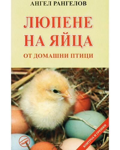 Люпене на яйца - 1
