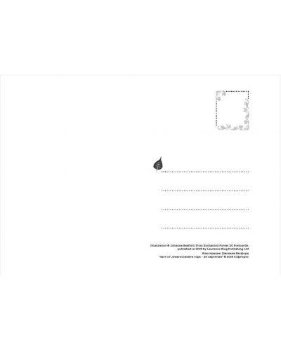 Омагьосаната гора - 20 картички - 3