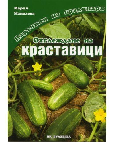 Отглеждане на краставици - 1