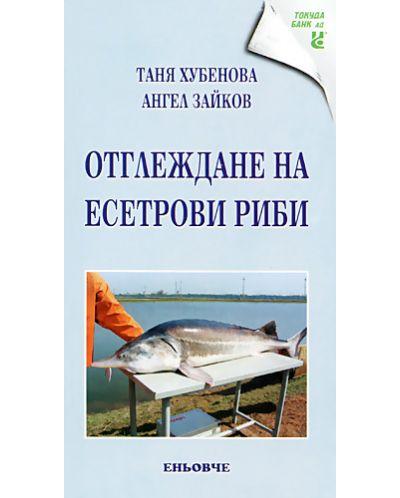 Отглеждане на есетрови риби - 1