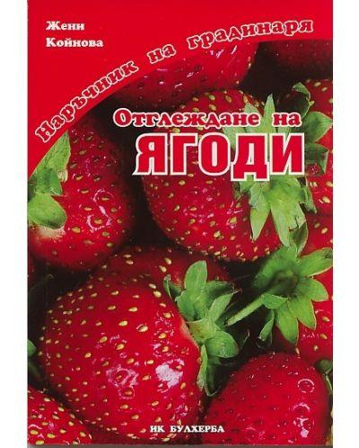 Отглеждане на ягоди - 1
