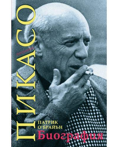pikaso-biografiya - 1