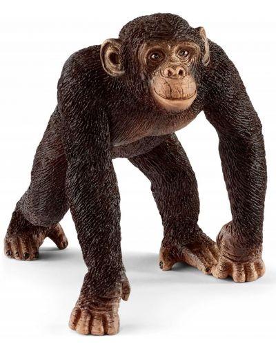 Фигурка Schleich Wild Life - Мъжко шимпанзе - 1