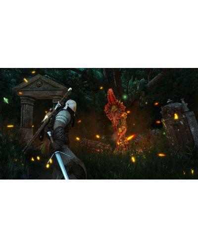 The Witcher 3: Wild Hunt - Blood & Wine (PC) - 8