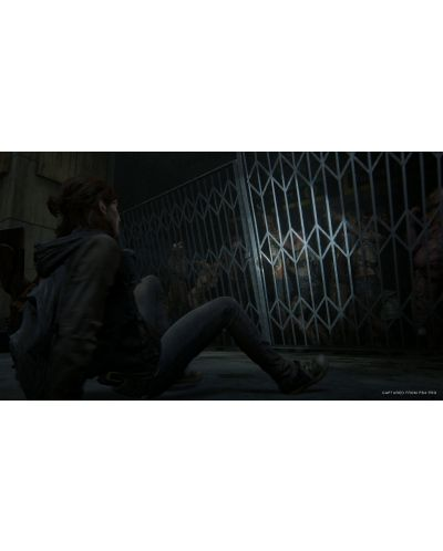 The Last of Us: Part II (PS4) - 18