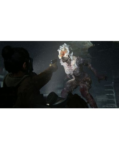 The Last of Us: Part II (PS4) - 26