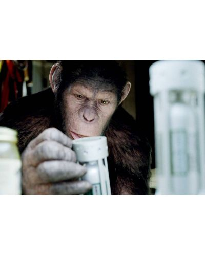 Възходът на Планетата на маймуните (DVD) - 4