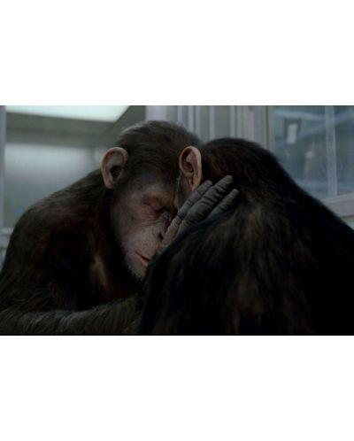 Възходът на Планетата на маймуните (Blu-Ray) - 6