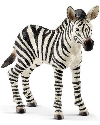 Фигурка Schleich Wild Life - Бебе зебра - 1