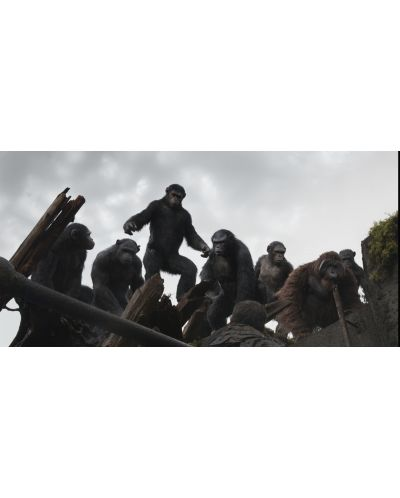 Зората на Планетата на маймуните 3D (Blu-Ray) - 13
