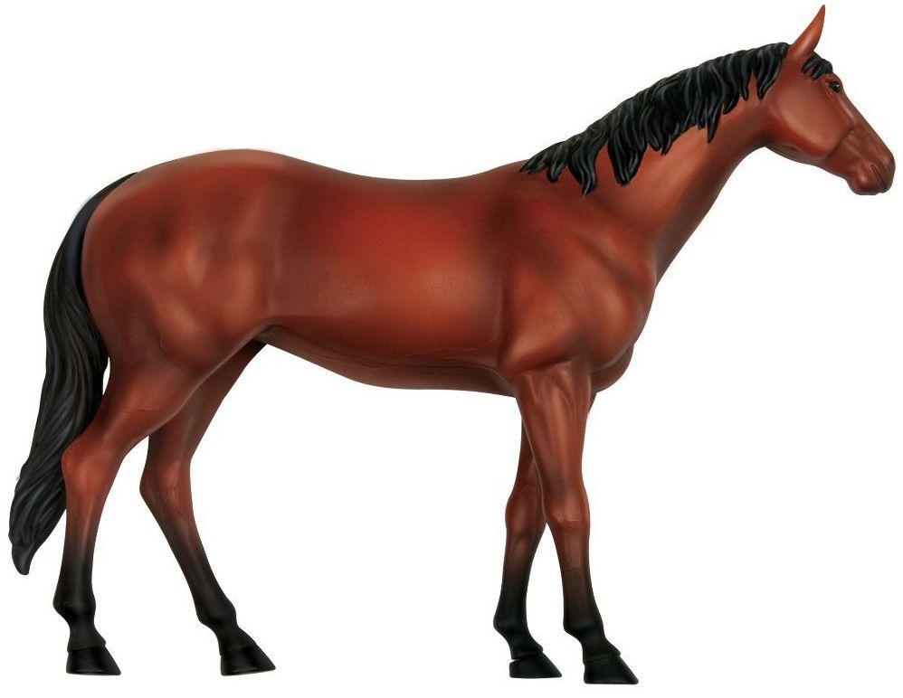 Сглобяем модел на кон Revell - Horse Anatomy Model (02099) - 2