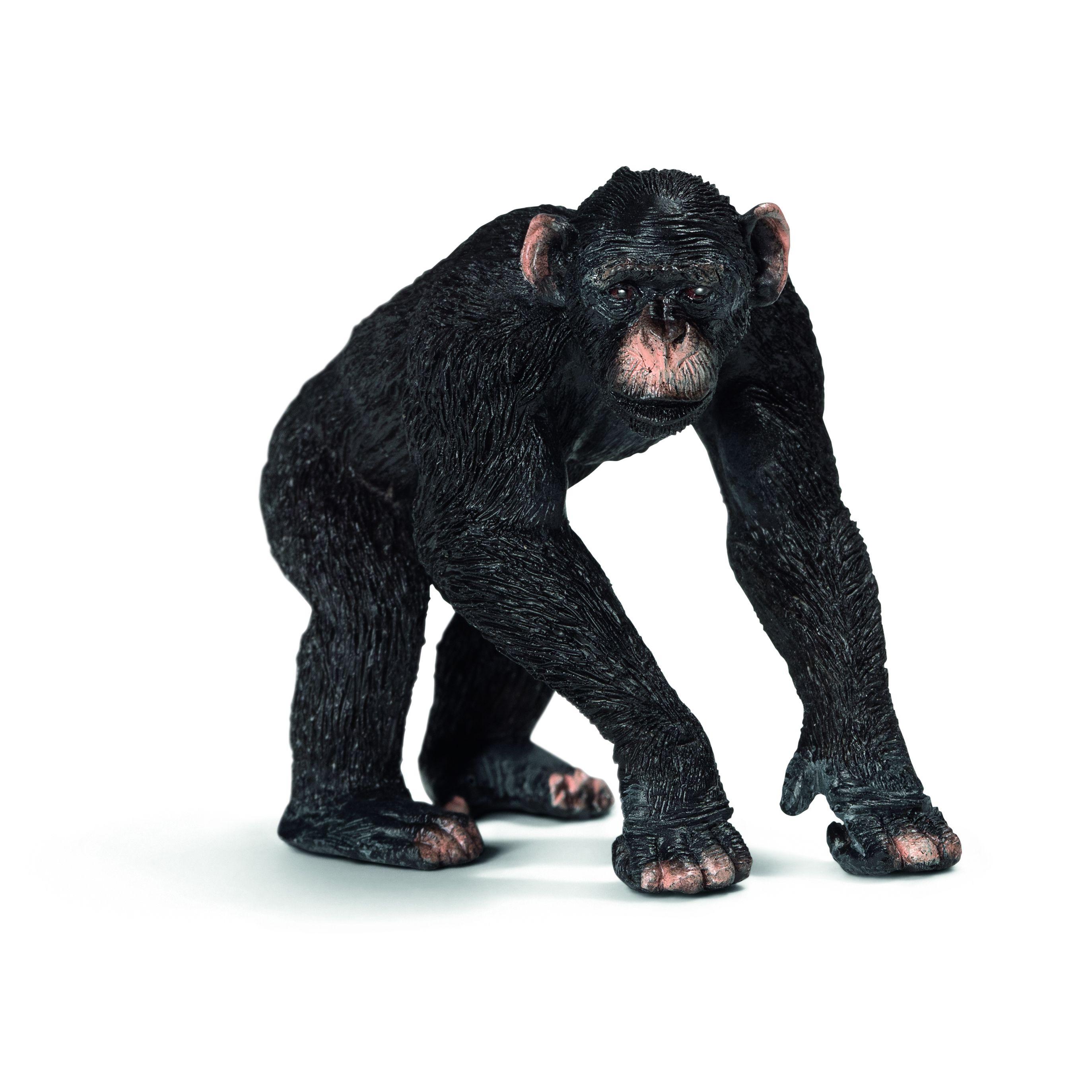 Фигурка Schleich от серията Дивия живот - Африка: Шимпанзе, мъжко - 1
