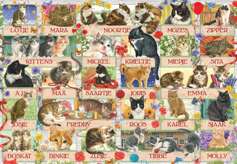 Пъзел Jumbo от 1000 части - Годишнина на котките на Франсин - 2