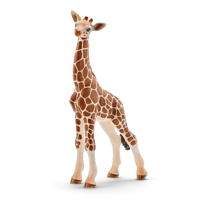 Фигурка Schleich от серията Дивия живот - Африка: Жираф мрежест - бебе - 1