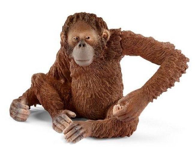 Фигурка Schleich от серията Азия и Австралия – Орангутан – женски - 1