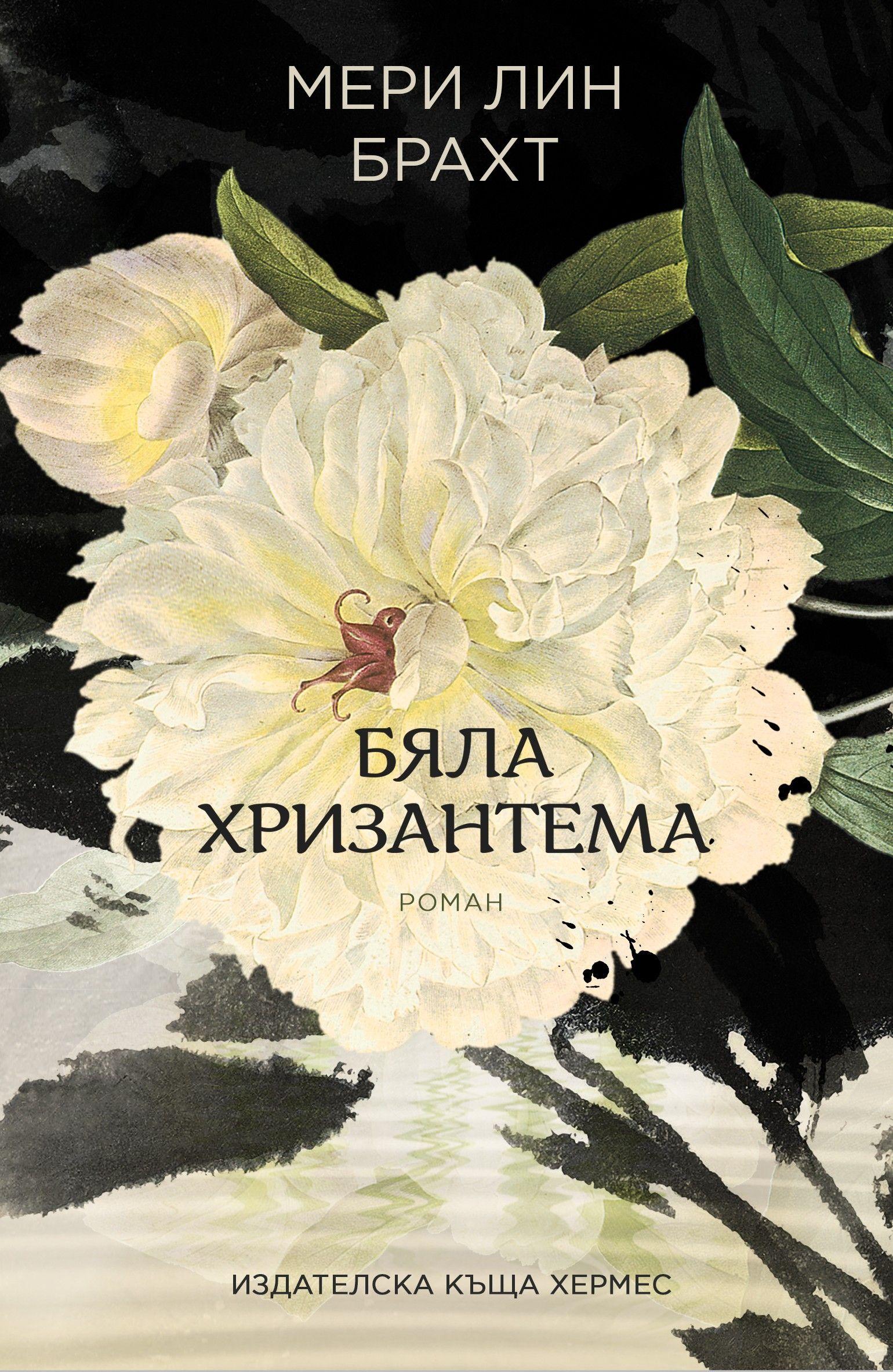 Бяла хризантема - 1